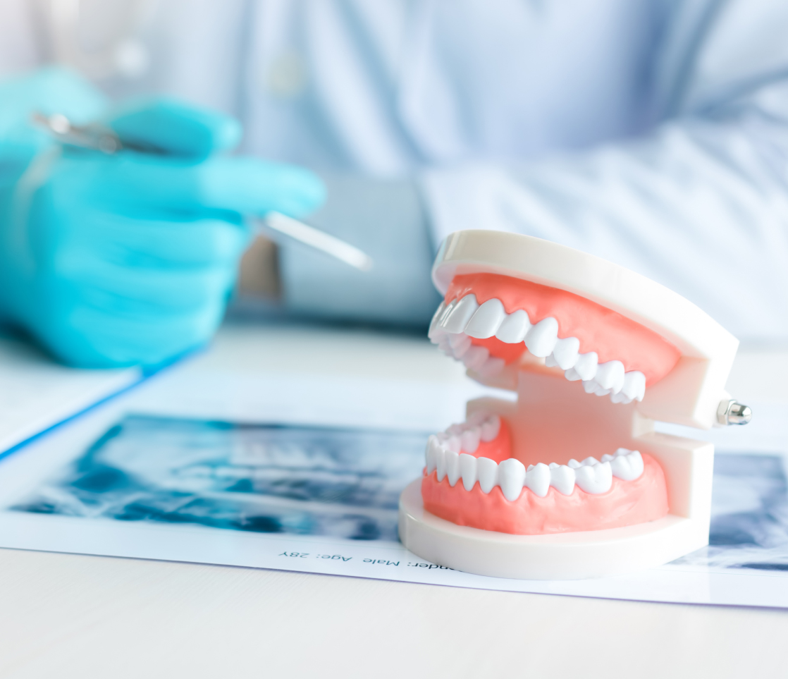 Regular Orthodontic Appointments